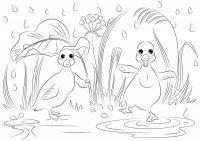 Funny cartoon ducks dancing under the rain Coloring Page
