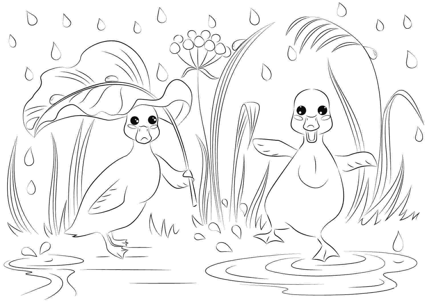 Funny cartoon ducks dancing under the rain Coloring Pages