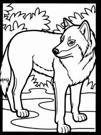 The wolf looks backwards in the forest Coloring Page