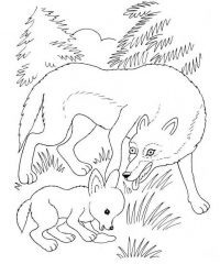 Wolf mother and wolf cub play together on the grass Coloring Page