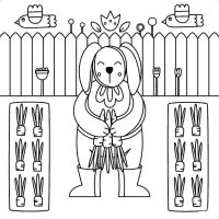 Bunny harvests carrots in the garden Coloring Page