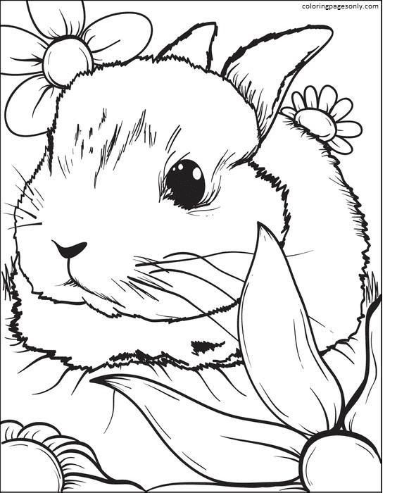 Bunny Cute 1 Coloring Page