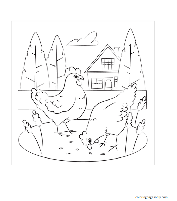 Chicken 20 Coloring Page