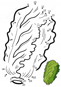 Chinese cabbage drawing dot-to-dots for kids Coloring Page