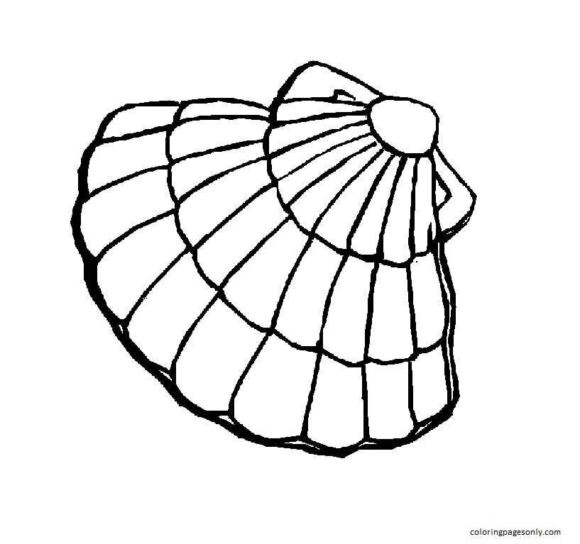 Clam Pattern Coloring Page