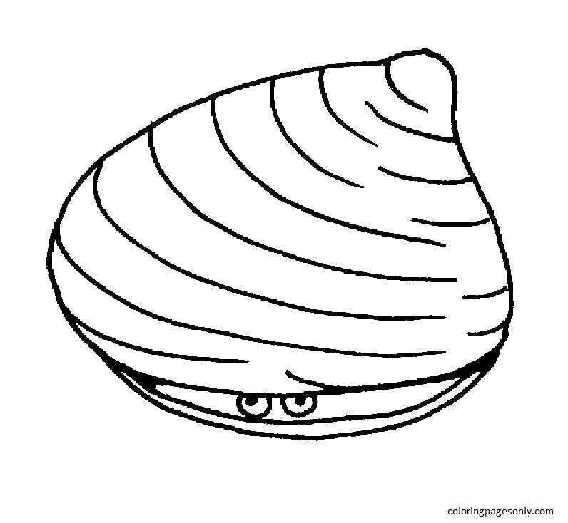 Clam Shell 1 Coloring Page