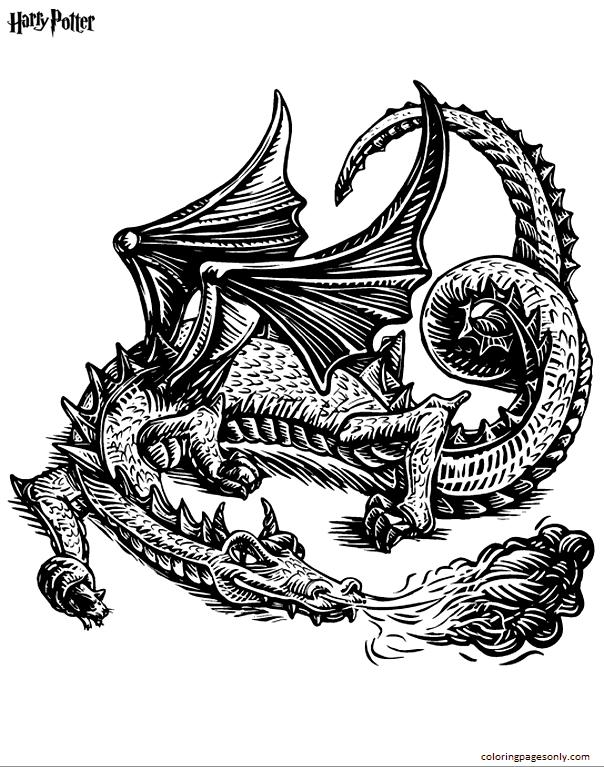 Dragon 1 Coloring Page