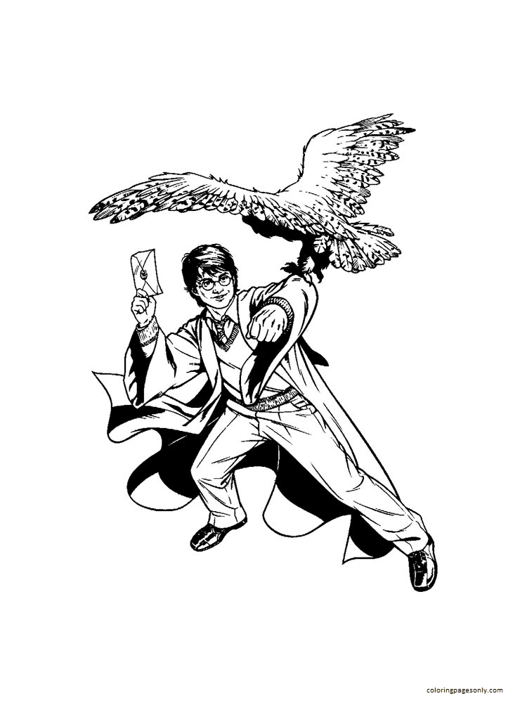 Harry Potter and Hedwig 1 Coloring Page