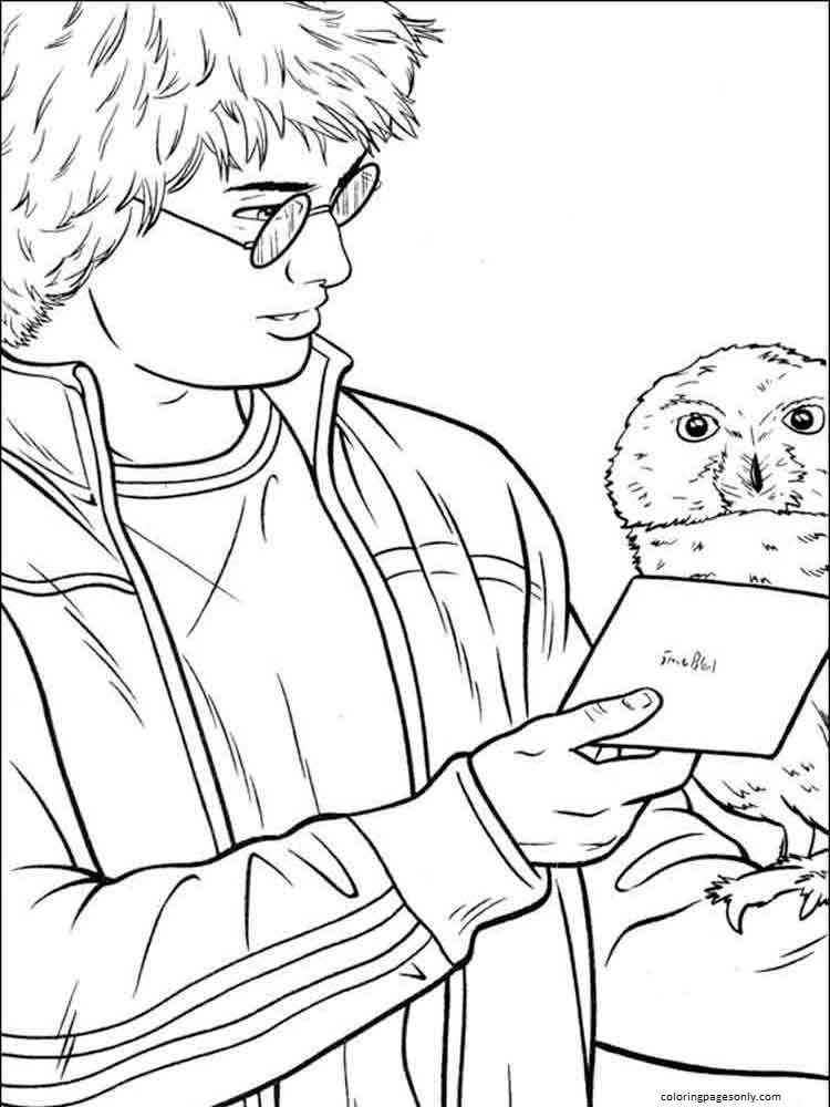 Harry Potter and Hedwig Coloring Page
