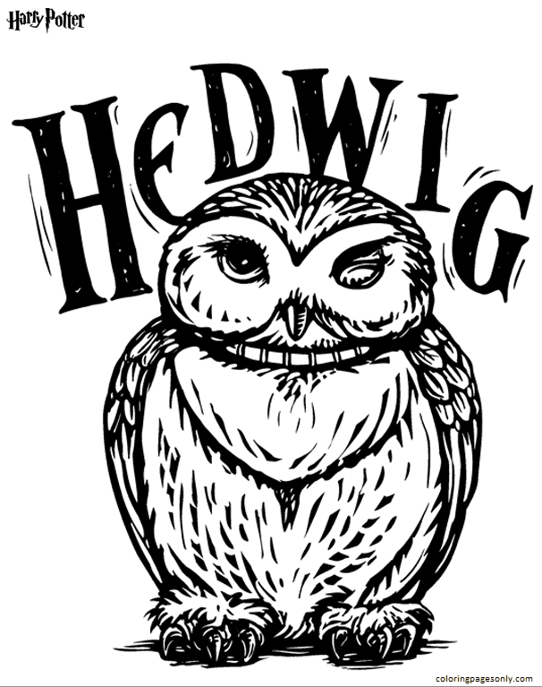 Hedwig 2 Coloring Page