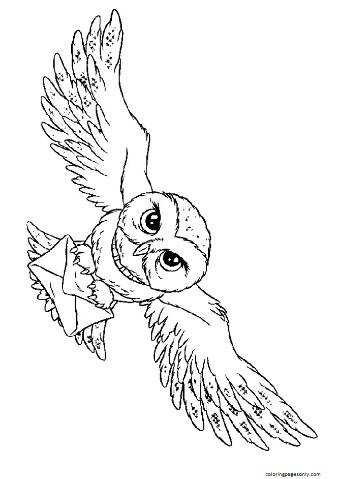 Hedwig Coloring Page