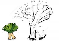 Leek connect the dots for kids Coloring Page