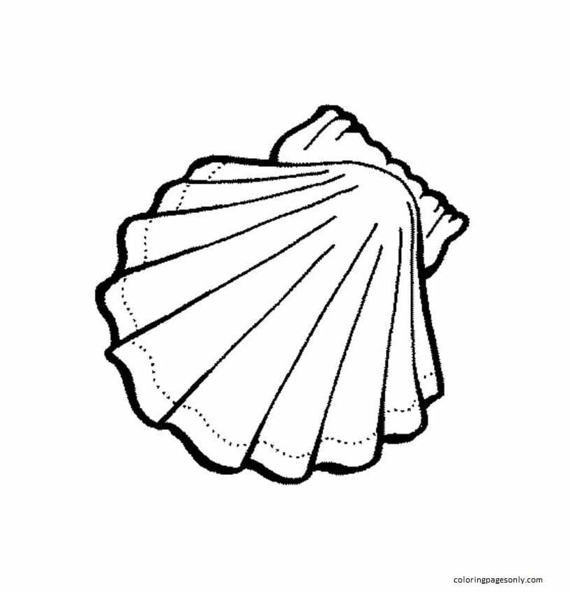 Pintable Clam Shell Coloring Page