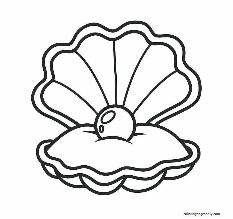 Pintable Free Clam Shell Coloring Page