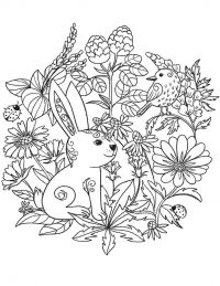 Flowers pattern on rabbit and bird Coloring Page