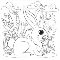 How to draw bunny in the forest Coloring Page