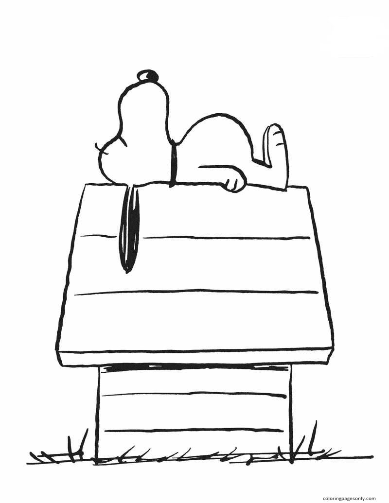 Snoopy Home 1 Coloring Page