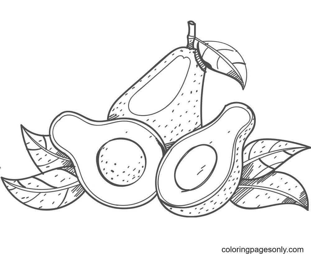 Avocados Coloring Page