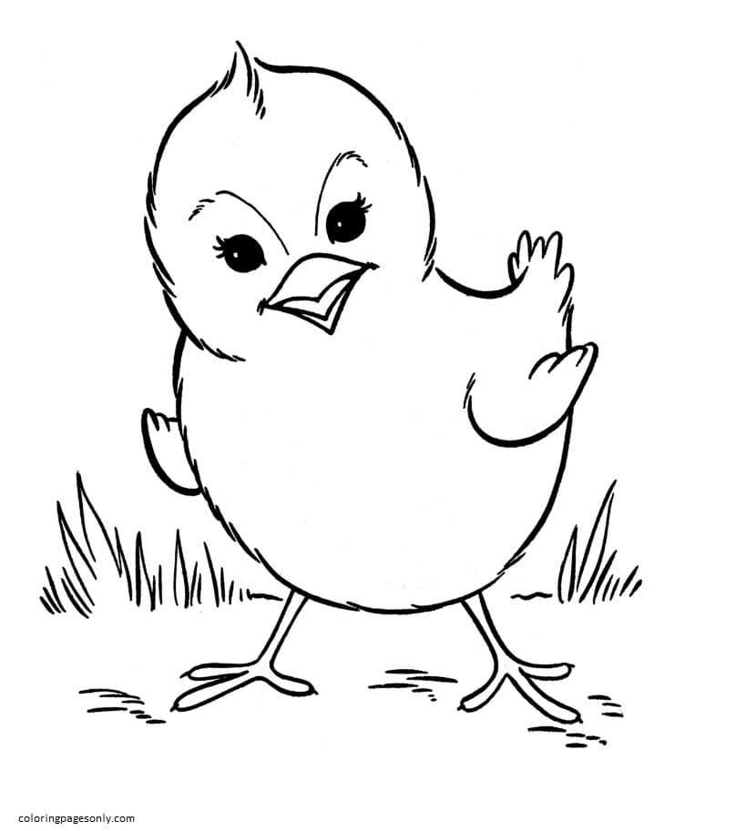 Baby Farm Animal Coloring Page