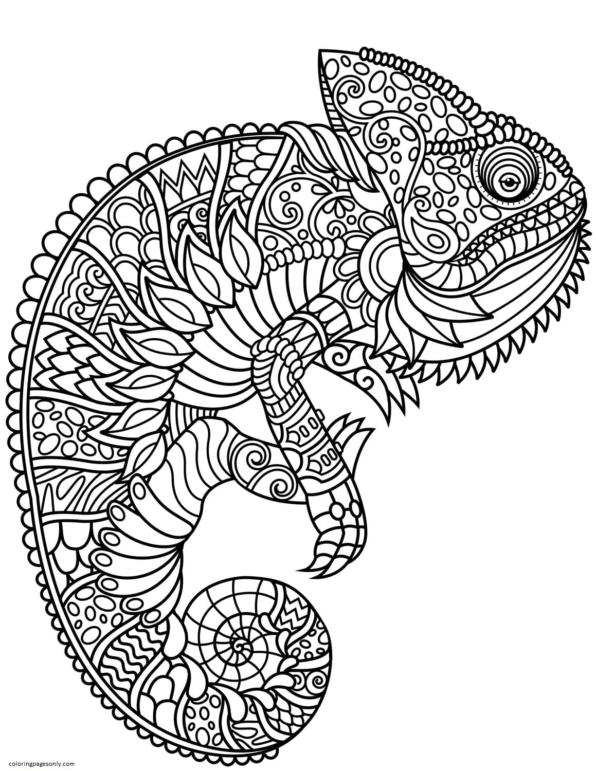 Chameleon Zentangle Coloring Page