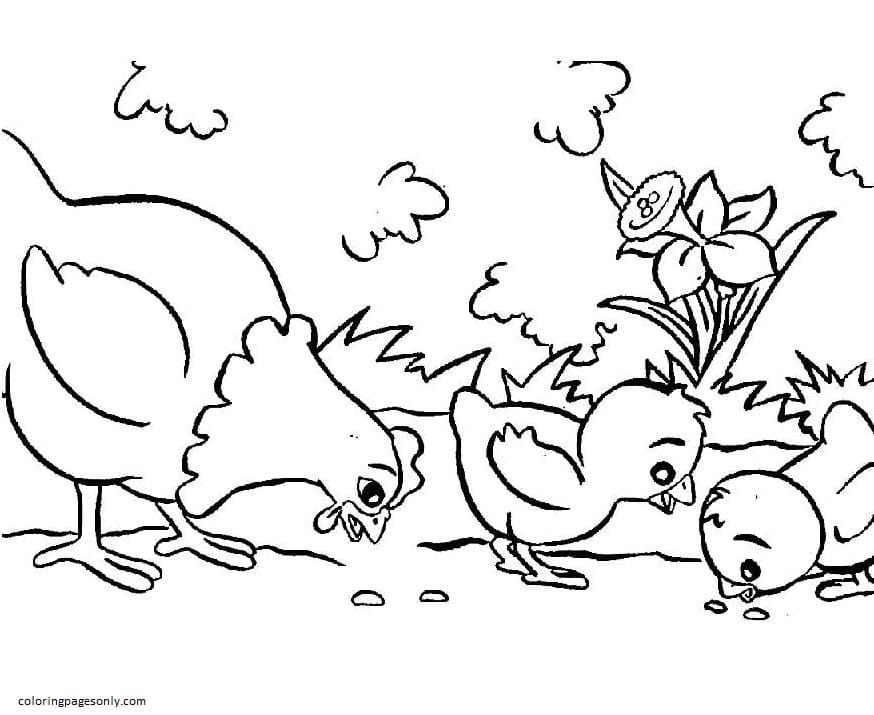 Chickens Farm Coloring Page