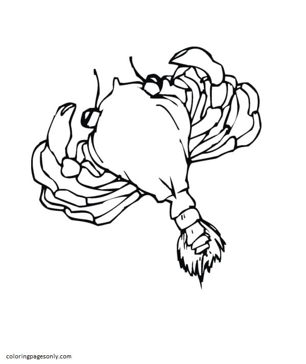 Crab 11 Coloring Page