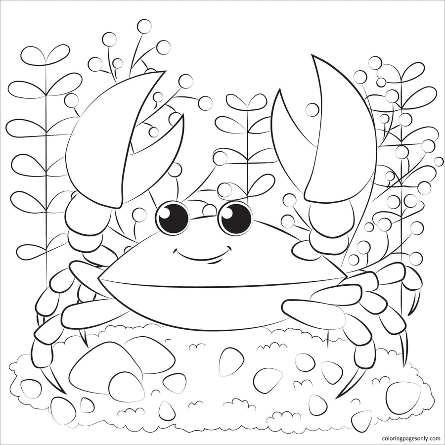 Crab 8 Coloring Page