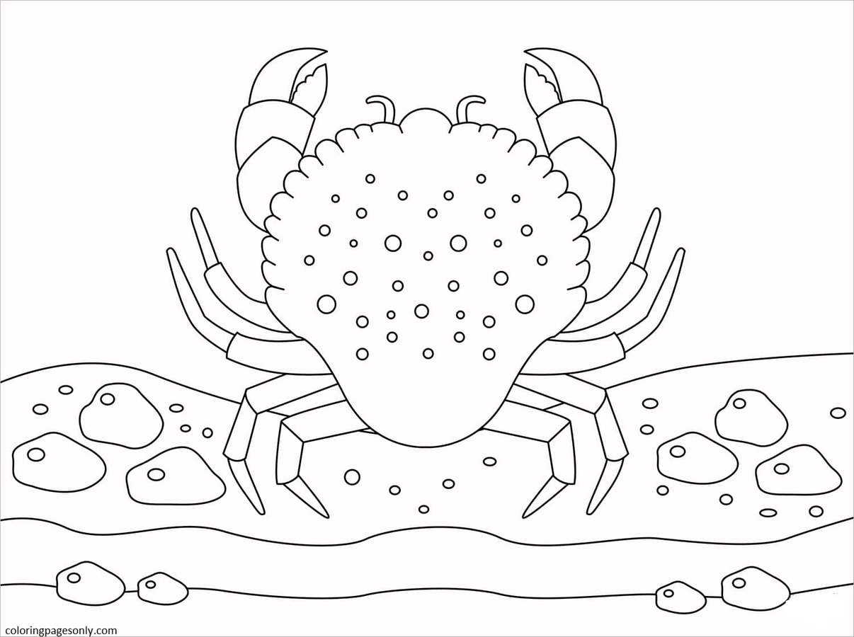 Crab 9 Coloring Page