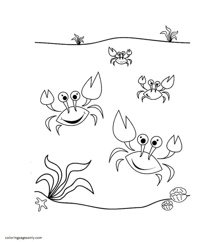 Dancing Sea Crabs Coloring Page