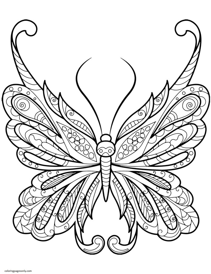 Difficult Butterfly Zentangle Coloring Page