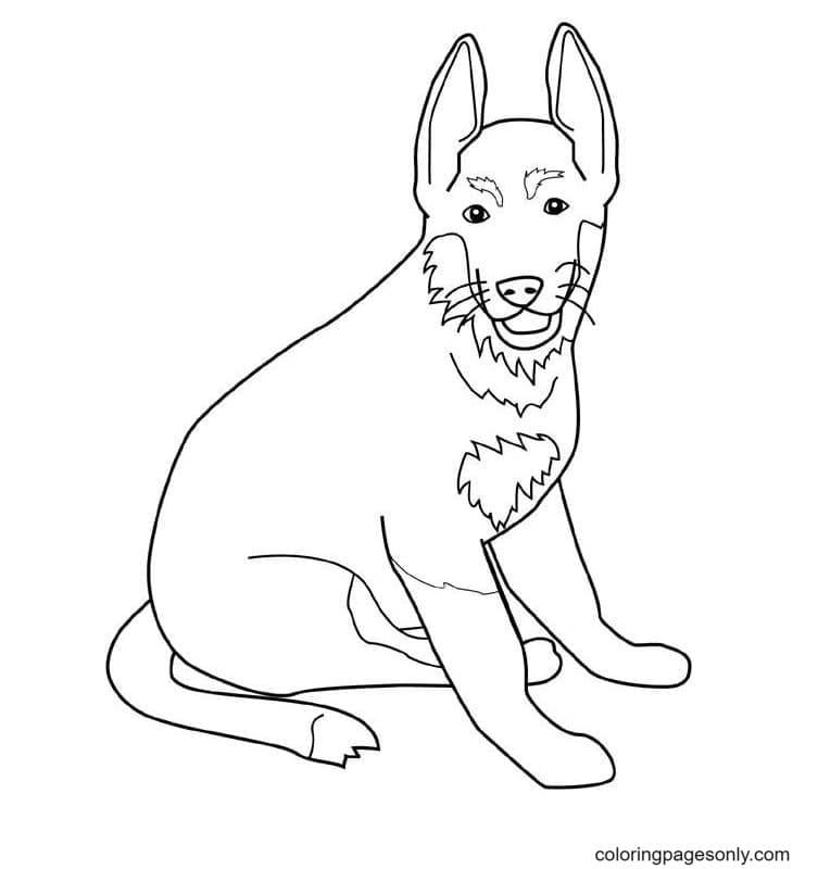 Dog German Shepherd Coloring Page