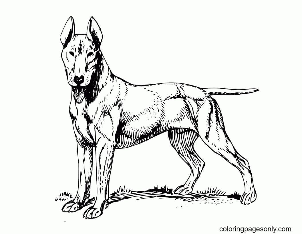 Dogs German Shepherd Coloring Page