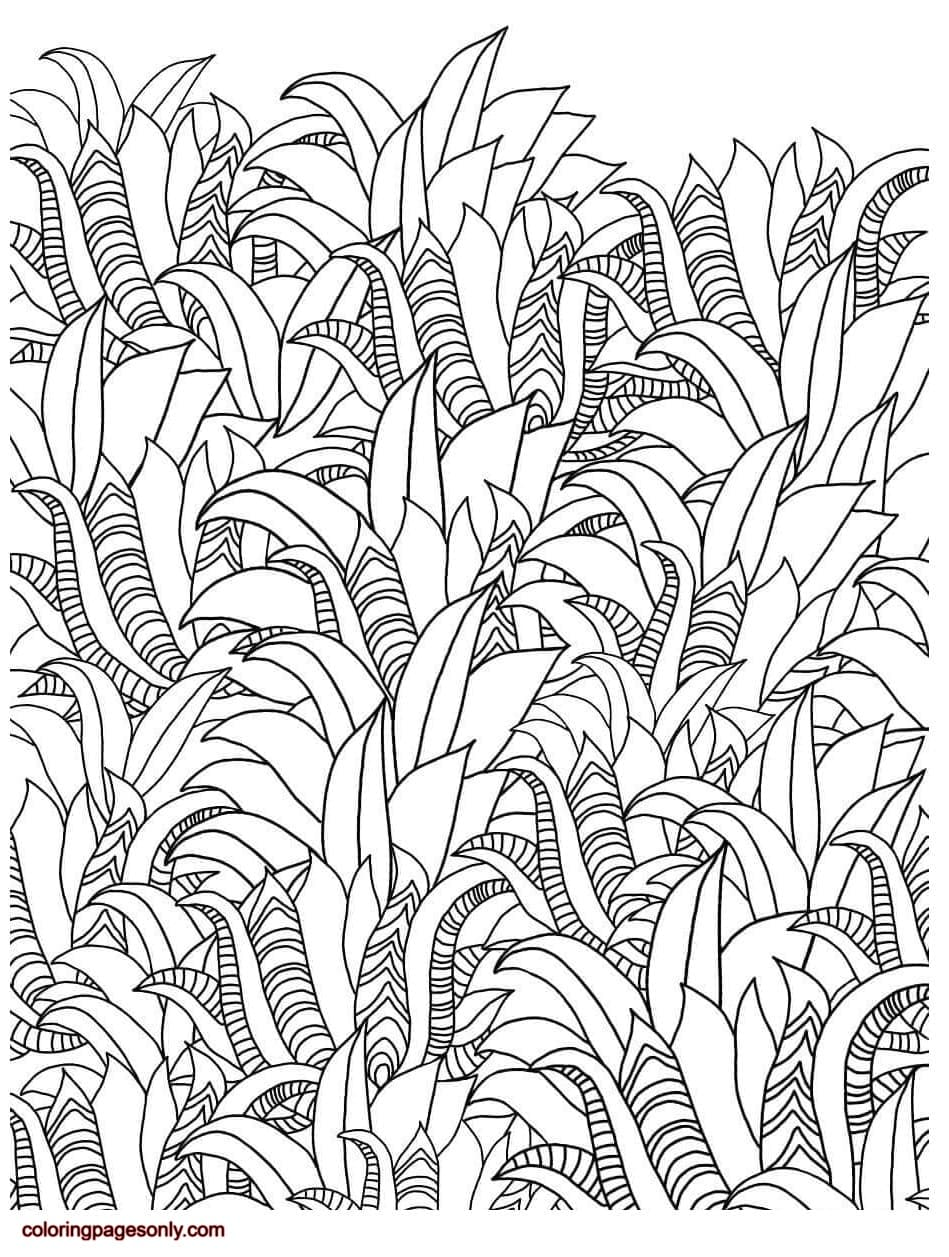 Floral Pattern 5 Coloring Page