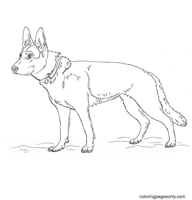 Free German Shepherd Dog Printable Coloring Page