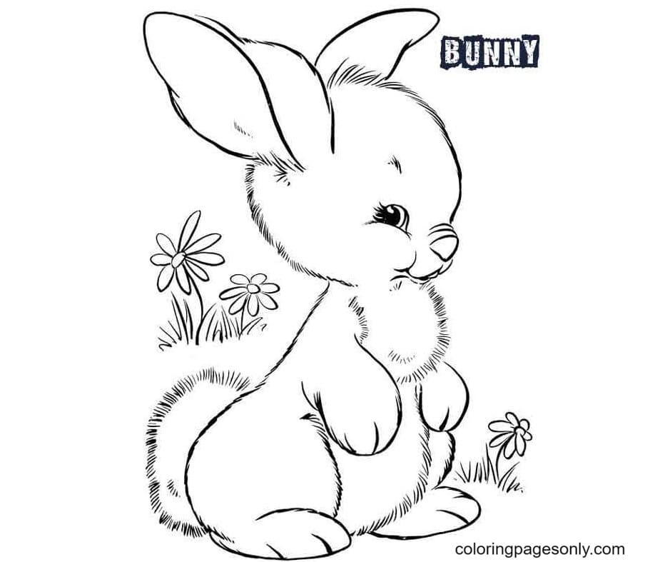 Free Printable Bunnies Coloring Page