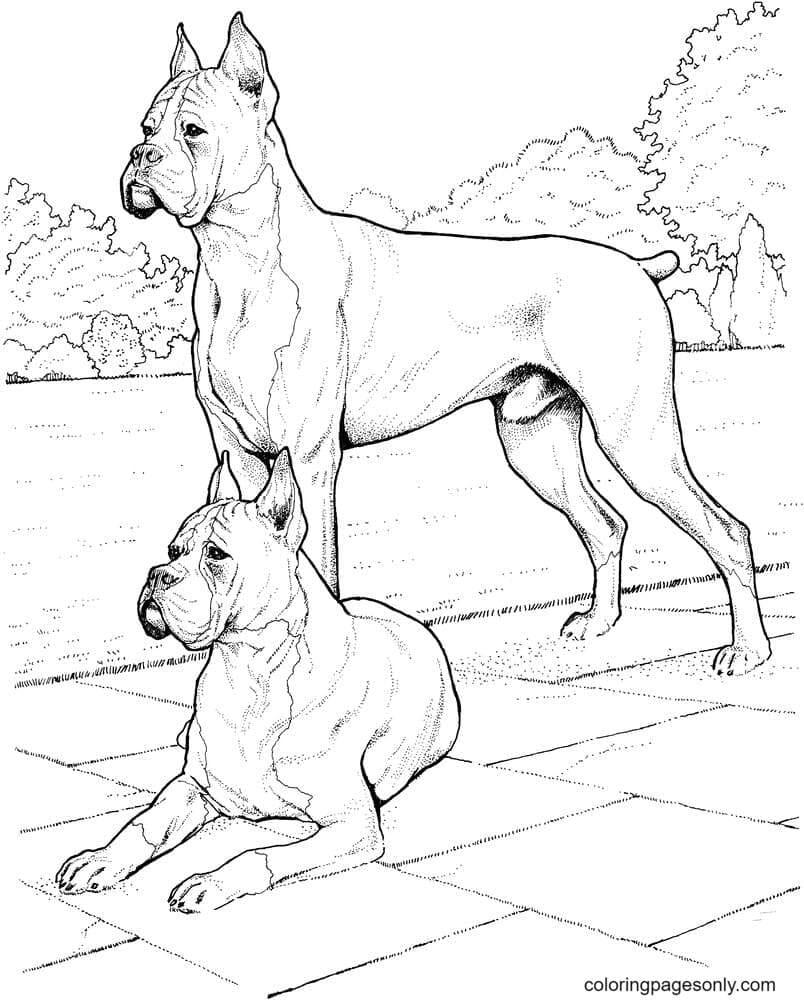 Free Printable German Shepherd Dogs Coloring Page