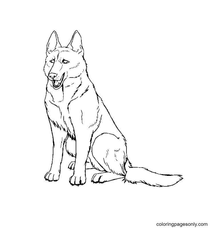 Free Printable German Shepherd Coloring Page