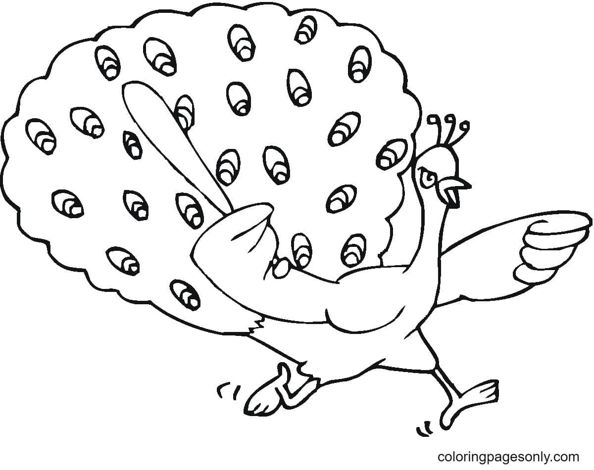 Funny Peacock 1 Coloring Page