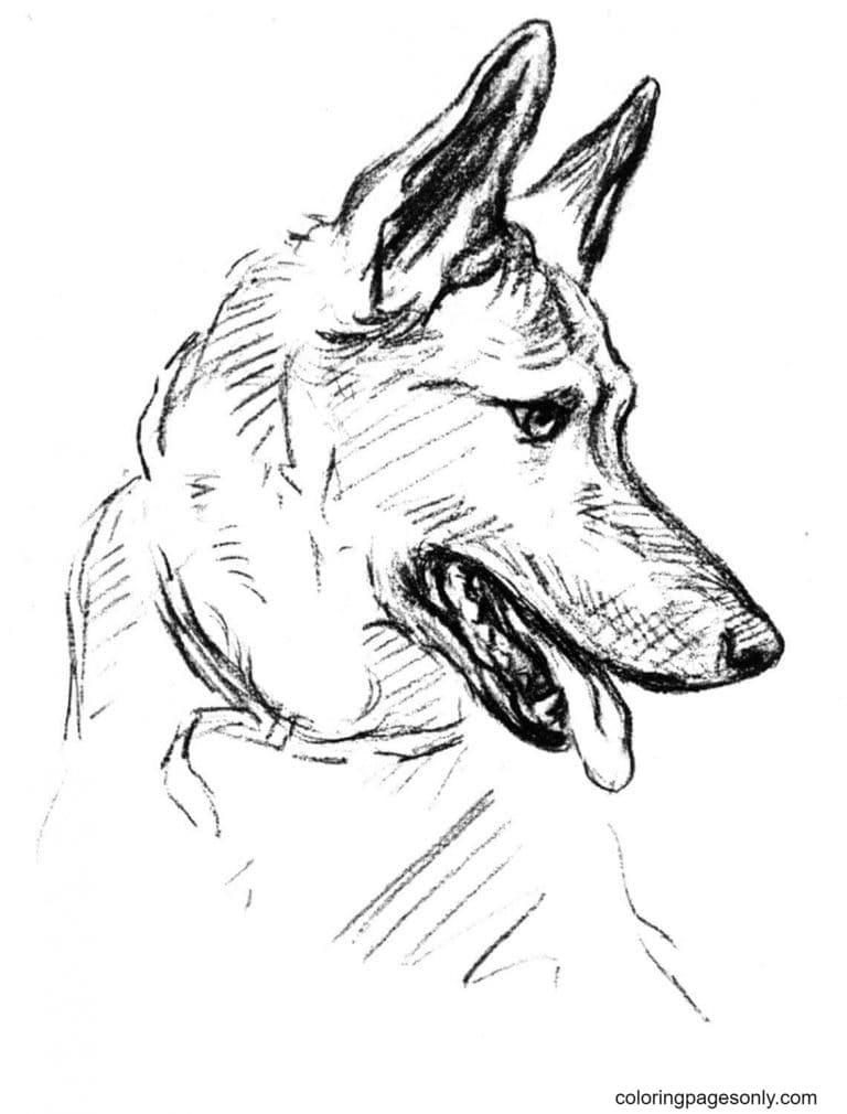 German Shepherd Dog Drawing Coloring Page