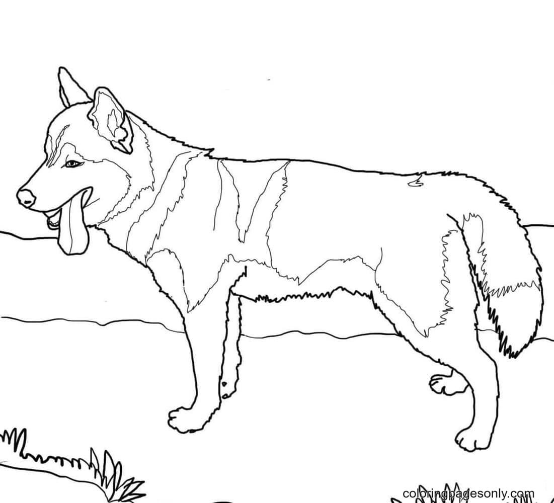 German Shepherd Dogs Free Printable Coloring Page