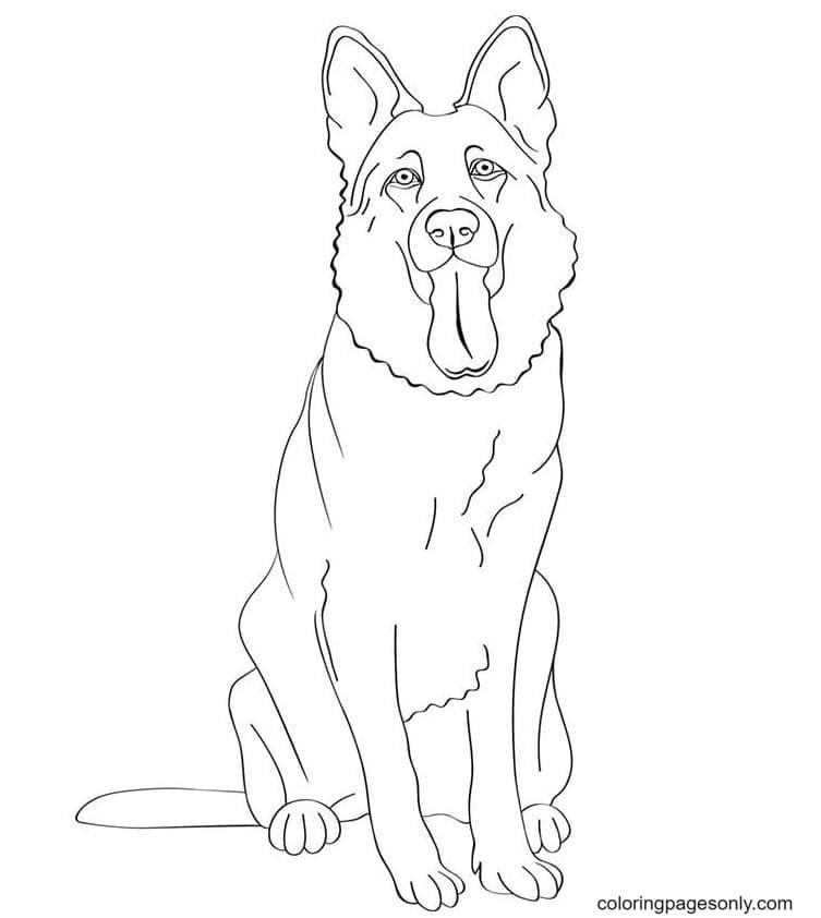 German Shepherd Dogs free Coloring Page