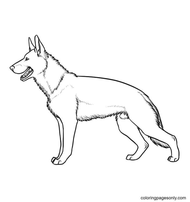 German Shepherd Free Download Coloring Page