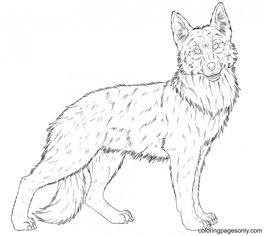 German Shepherd Free Coloring Page