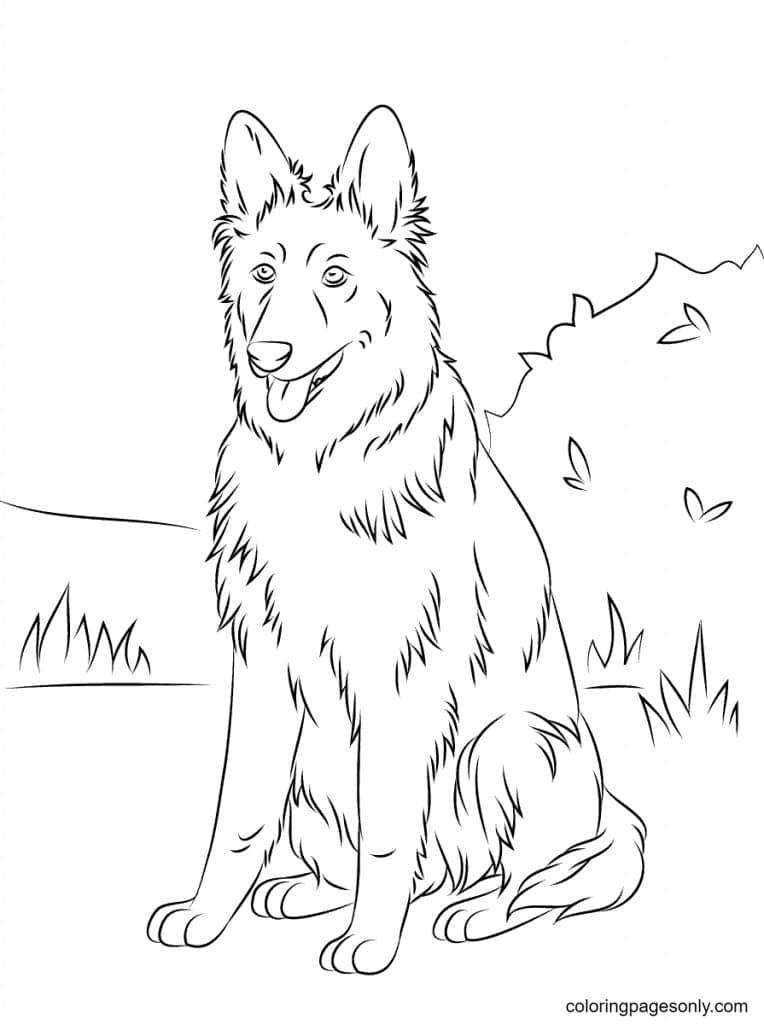 German Shepherd Outside Coloring Page