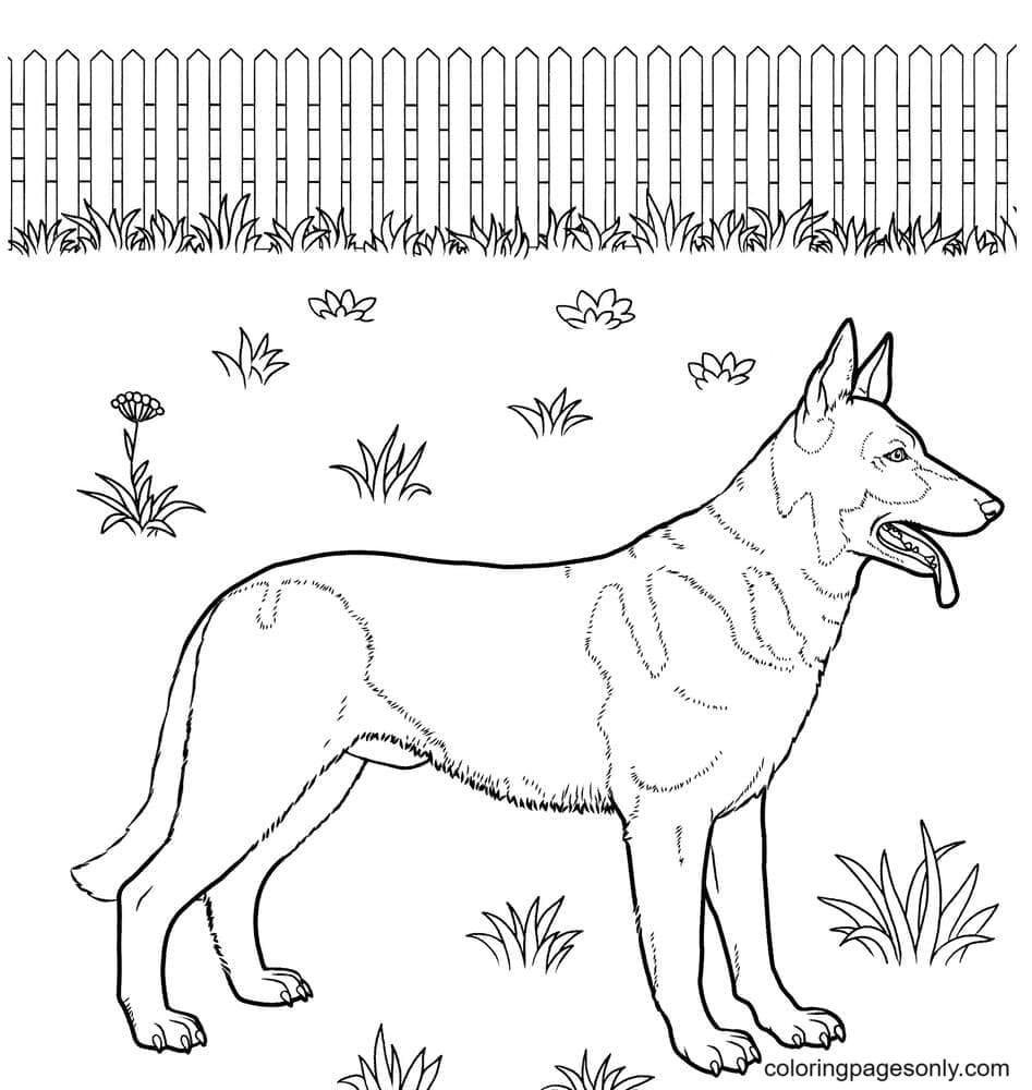 German Shepherd Puppies Coloring Page