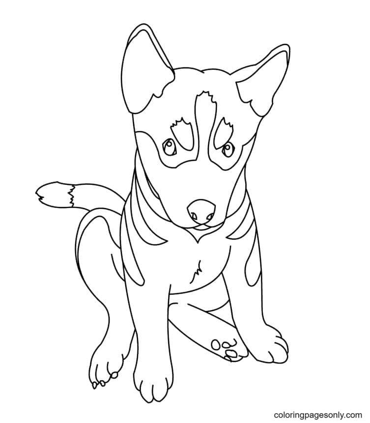 German Shepherd Puppy Drawings Coloring Page