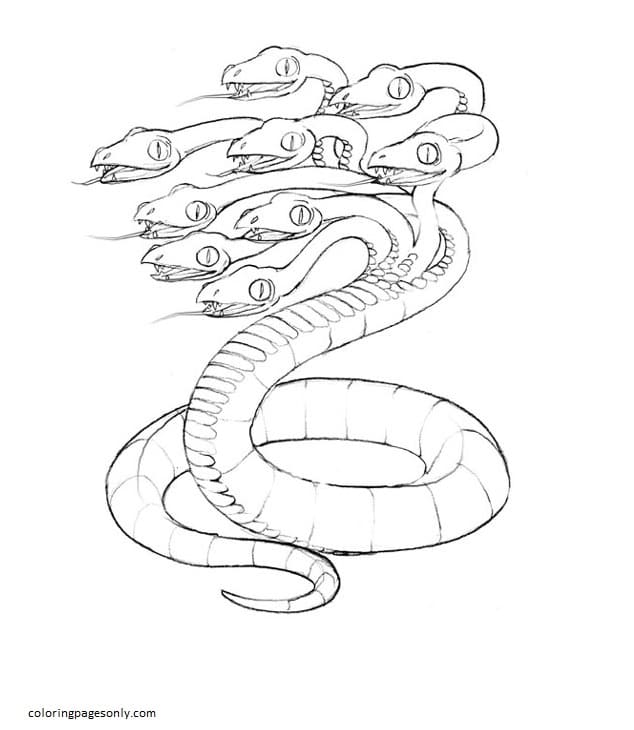 Hydra 5 Coloring Page