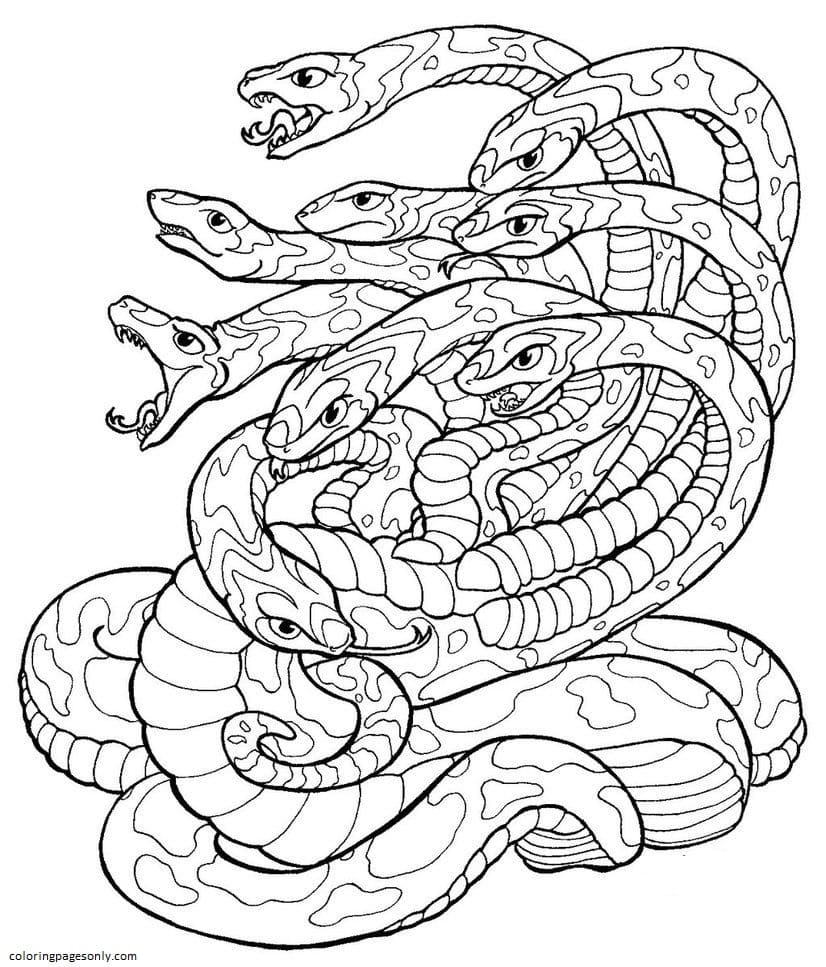Hydra 6 Coloring Page
