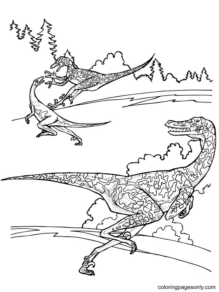 Jurassic Park Velociraptor Dinosaurs Coloring Page