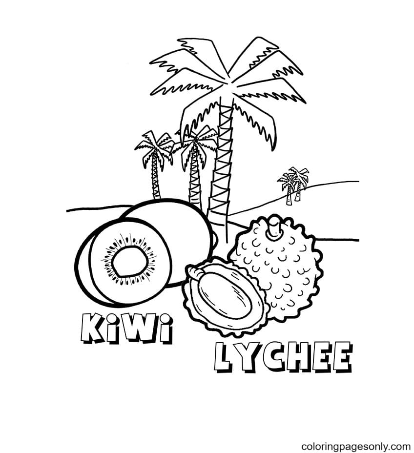 Kiwi and Lychee Coloring Page